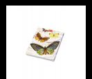 Bloc de notas estampado mariposas retro ideal como detalle de boda o comunión para las mujeres invitadas al evento en 12 modelos surtidos