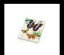 Original Bloc de notas estampado mariposas retro ideal como detalle de boda o comunión para las mujeres invitadas al evento en 12 modelos surtidos