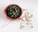 Abrebotellas símbolo & MrandMrs original para regalar a los hombres invitados