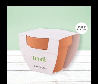 MACETA BASIL AGY50549